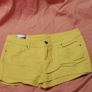 Delia's Taylor Shorty Shorts